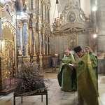 Вербное воскресенье в Будапеште